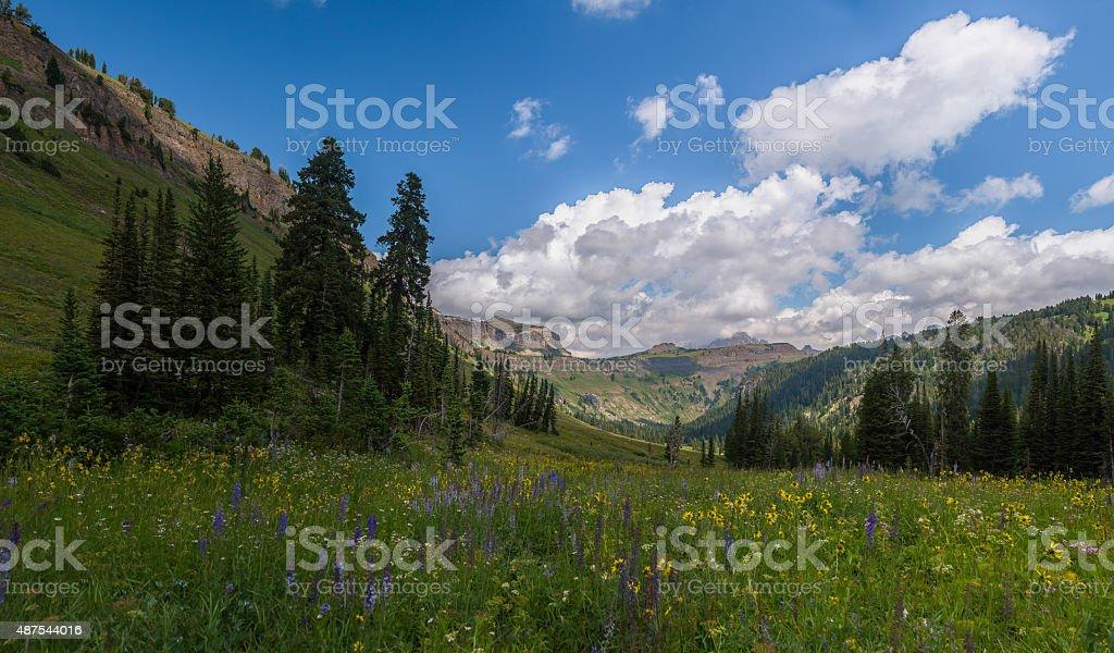 Death Canyon Loop stock photo