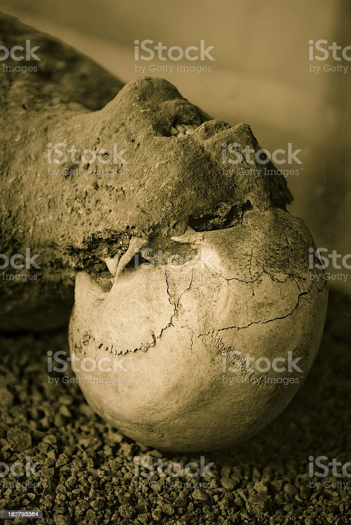 Death in Pompeii, Victim of volcanic eruptions royalty-free stock photo