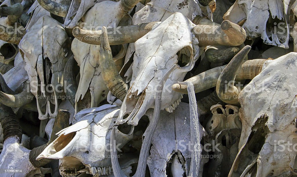 Death (Color) royalty-free stock photo