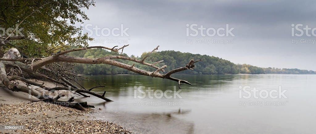 Death riverside.. stock photo