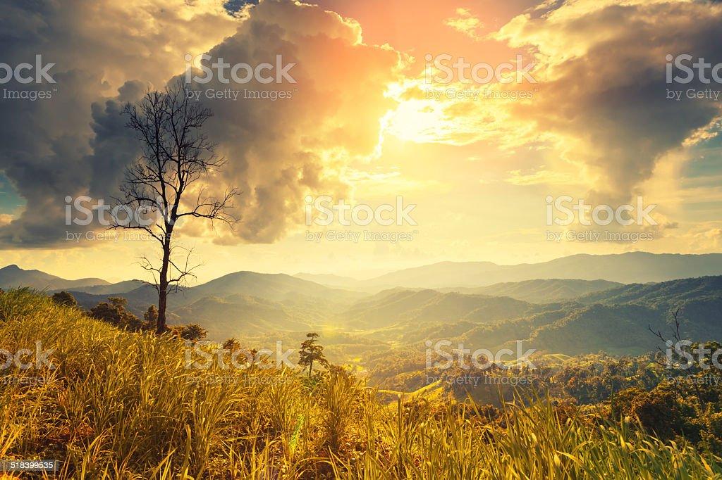 Tod-stand allein auf die Berge Lizenzfreies stock-foto
