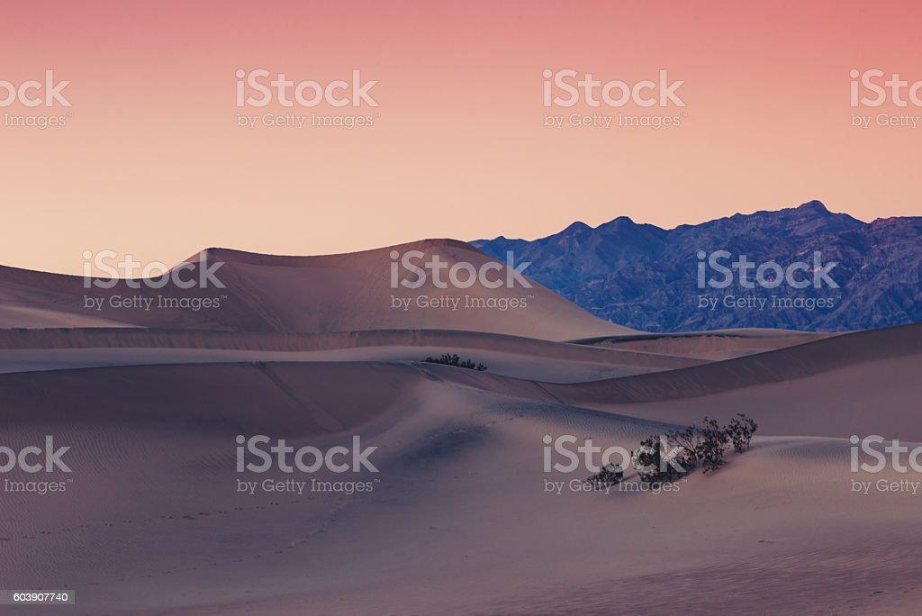 Death Valley Sand dune. Стоковые фото Стоковая фотография