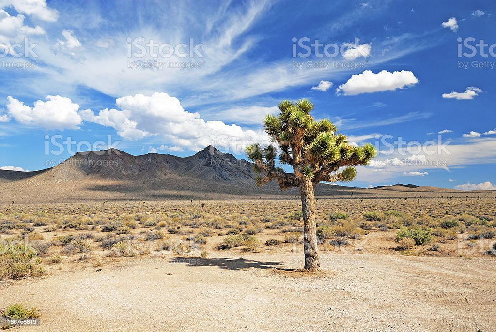 Death Valley Views stock photo