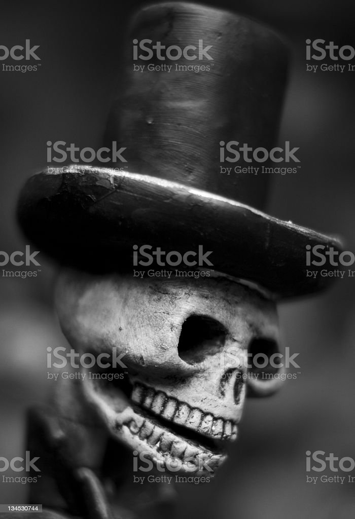Death's head royalty-free stock photo