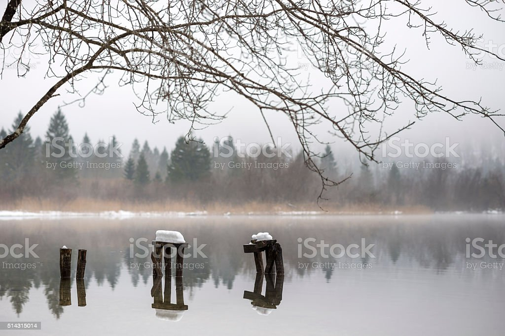Decaying piers covered with snow in lake stock photo