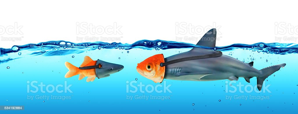 Deception Concept - Disguise Between Shark And Goldfish stock photo