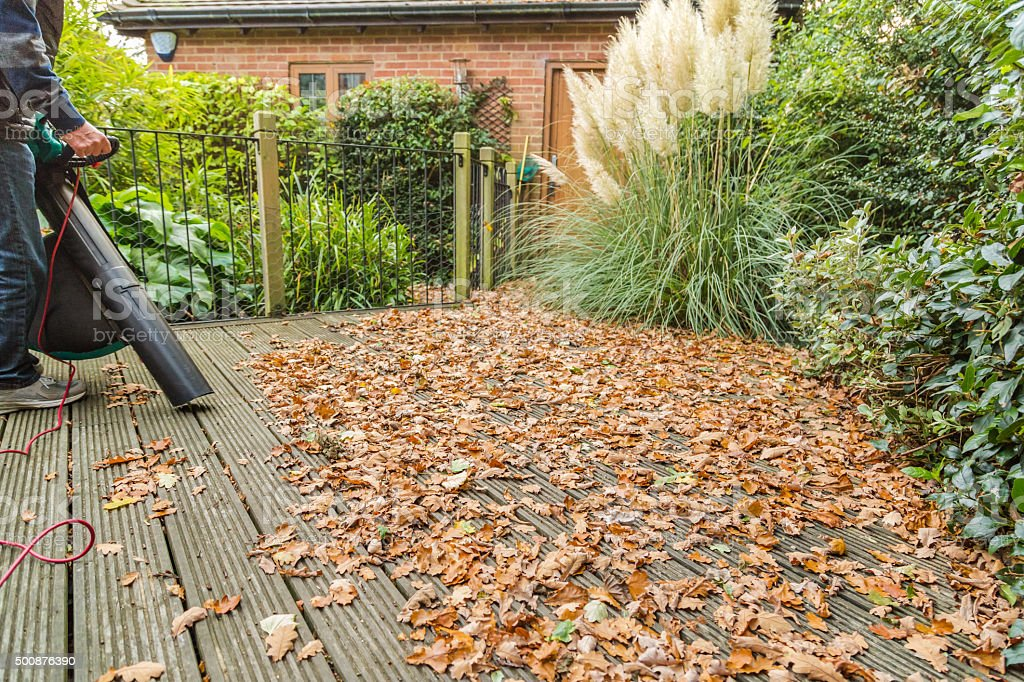 Deck covered in leaves being vacuumed stock photo