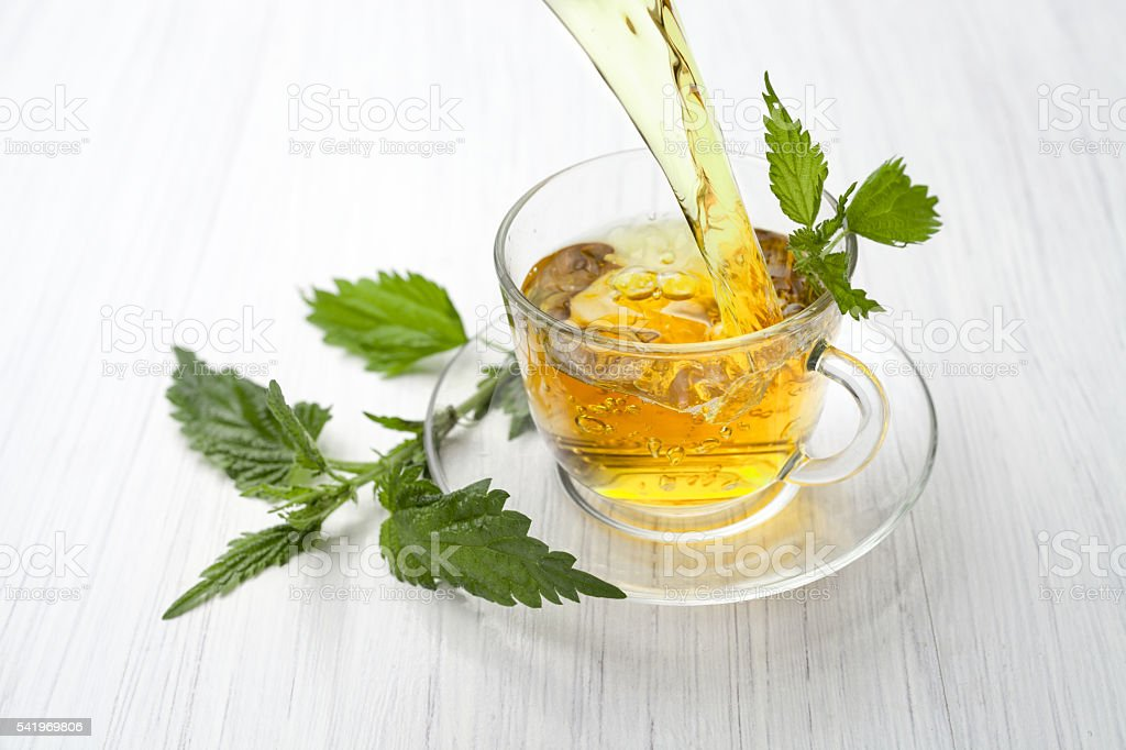 decoction of nettle stock photo