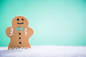 Decorated Christmas gingerbread in snow