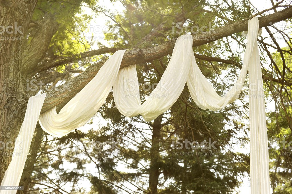 Decorated Tree with White Fabric stock photo