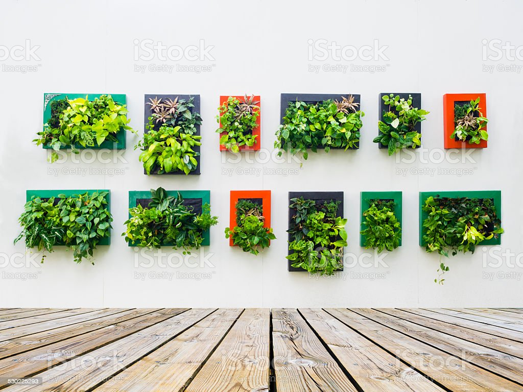 decorated wall by vertical planting stock photo