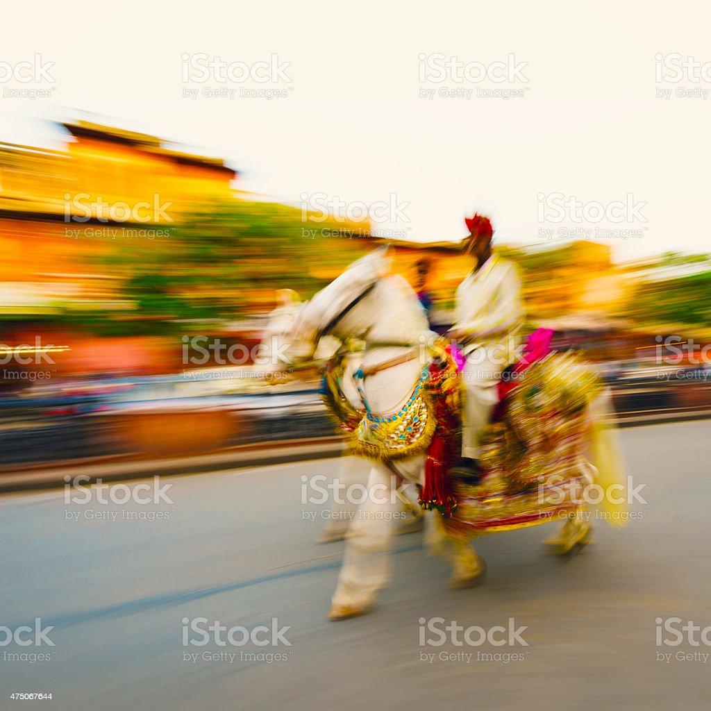 Decorated white indian horse stock photo