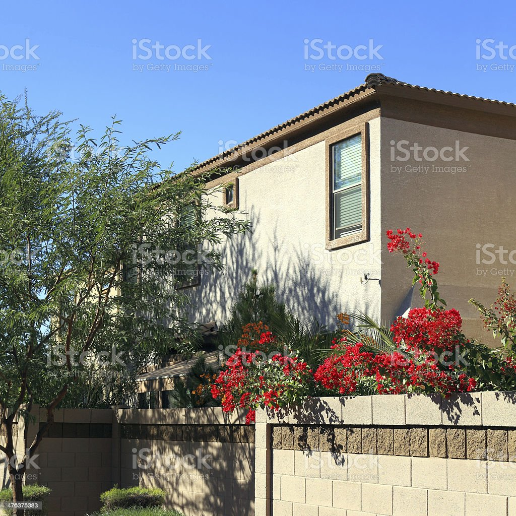 Decorating with Bougainvillea in Arizona royalty-free stock photo