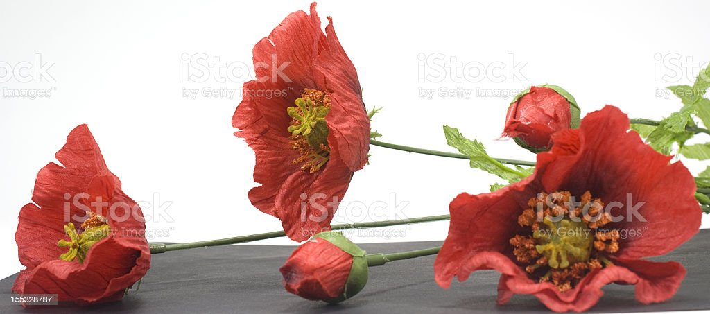 decoration flowers, poppies border royalty-free stock photo