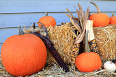 Decoration for Thanksgiving and Harvest