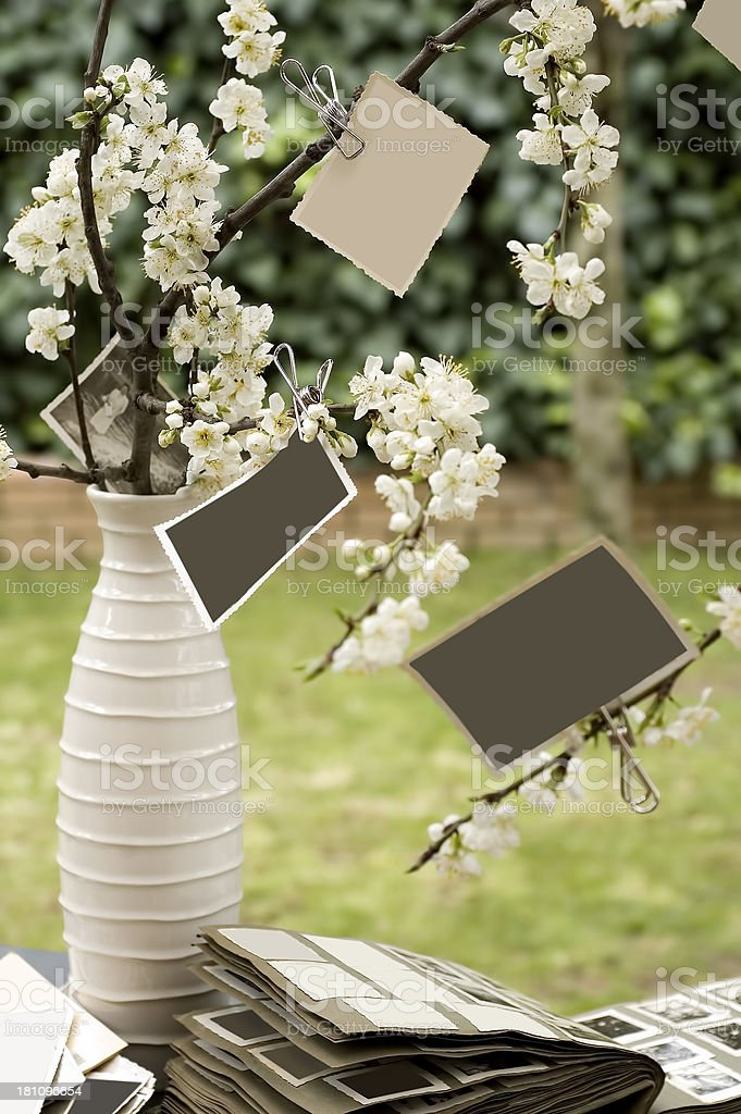 decoration ideas royalty-free stock photo