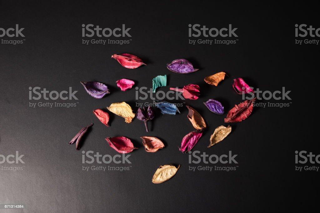 Decoration Plants stock photo