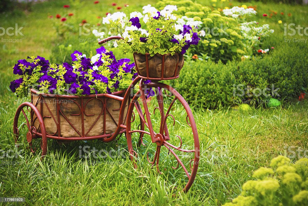 Decorative Bicycle In Garden royalty-free stock photo