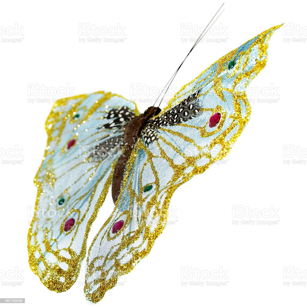 Decorative Butterfly on White stock photo