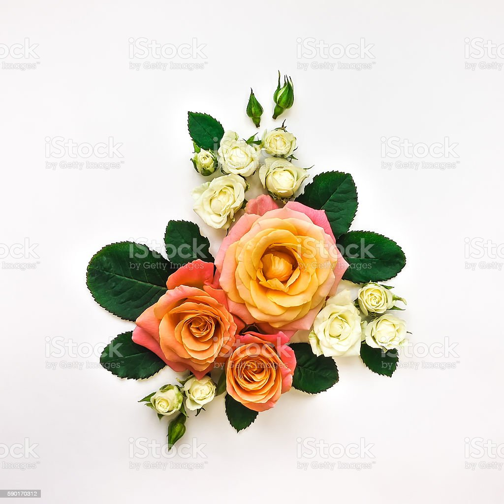 Decorative composition of roses, leaves on white background. Flat lay stock photo