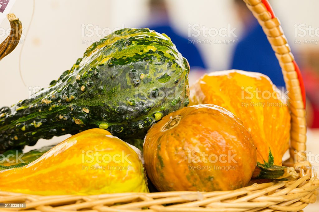 Decorative Fall Gourds in Basket stock photo