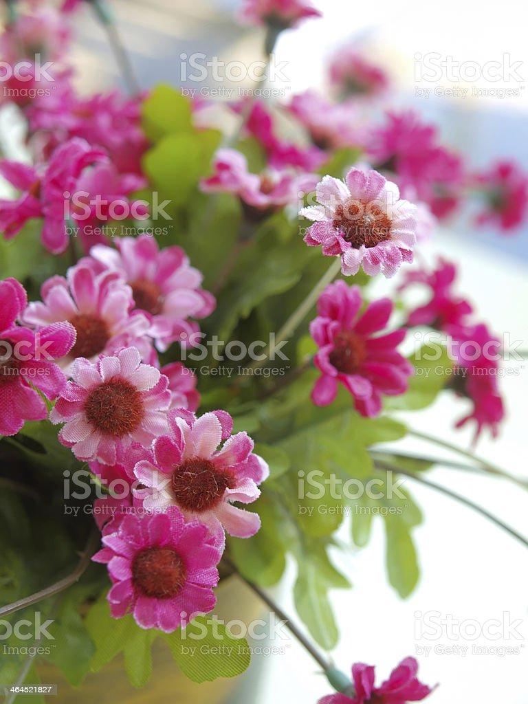 decorative flower royalty-free stock photo