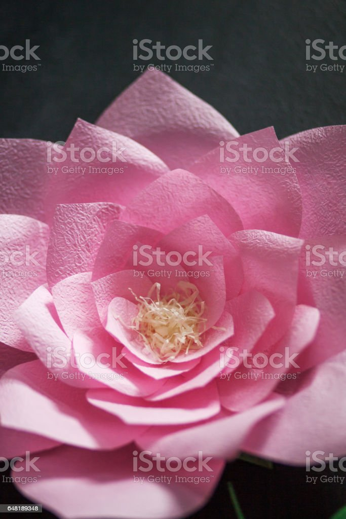 Decorative flowers from paper on a black background.  Soft focus. Closeup picture stock photo