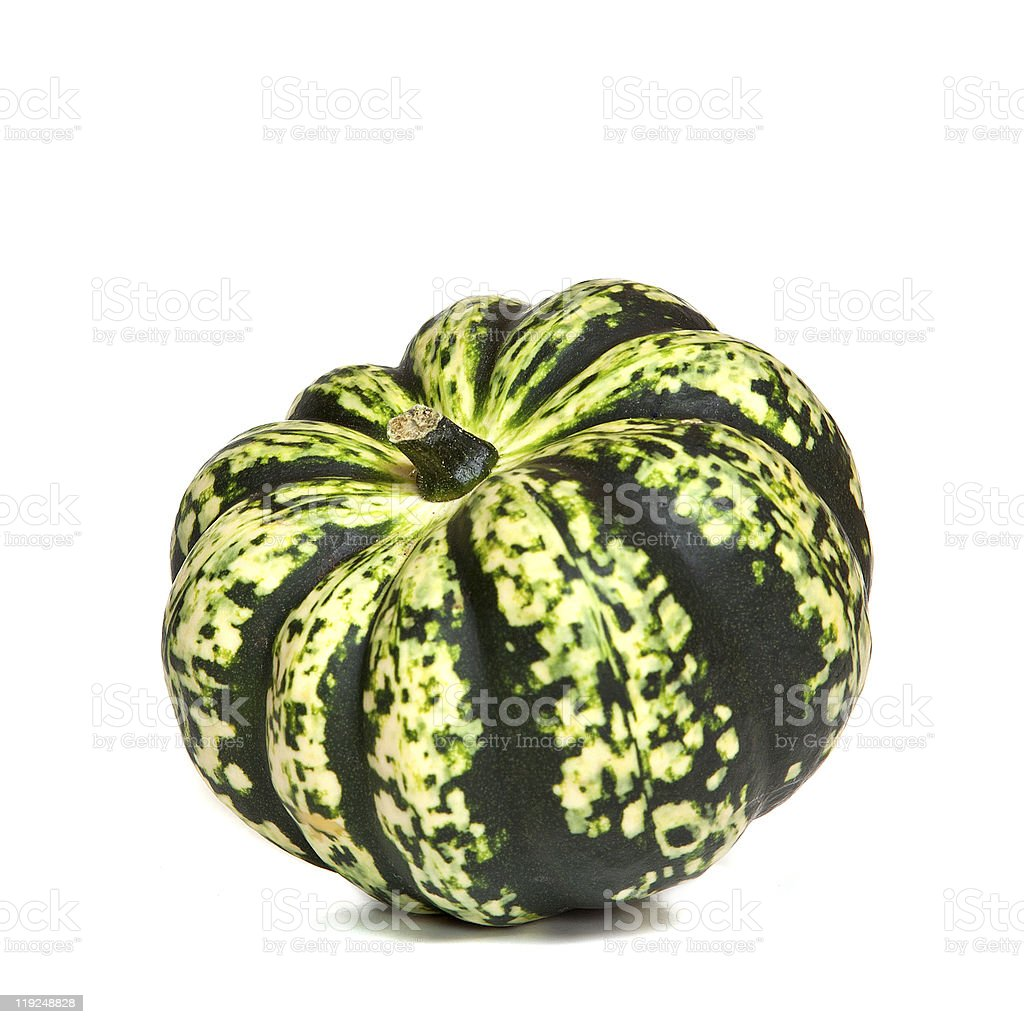 Decorative Green Squash royalty-free stock photo