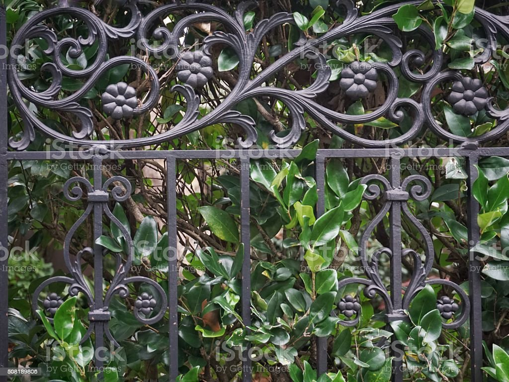 Decorative Ornamental Landscaping Garden Black Iron Fence, Plants stock photo
