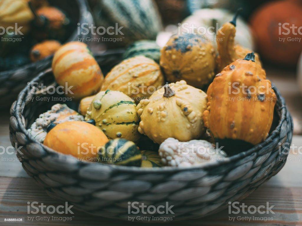 Decorative pumpkins in wicker basket stock photo