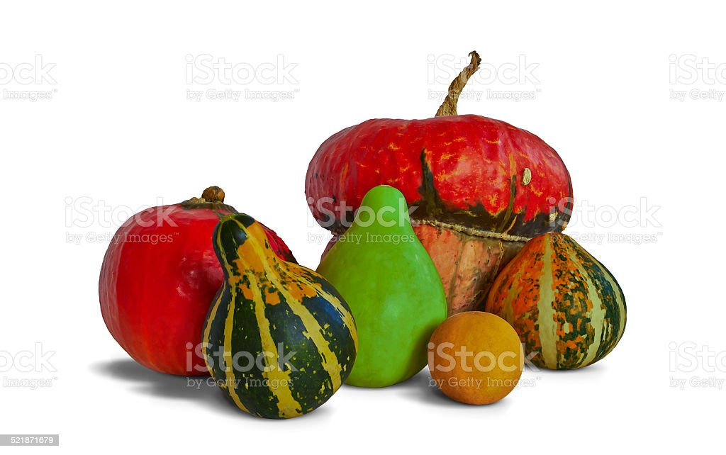Decorative pumpkins of different sizes and colors royalty-free stock photo