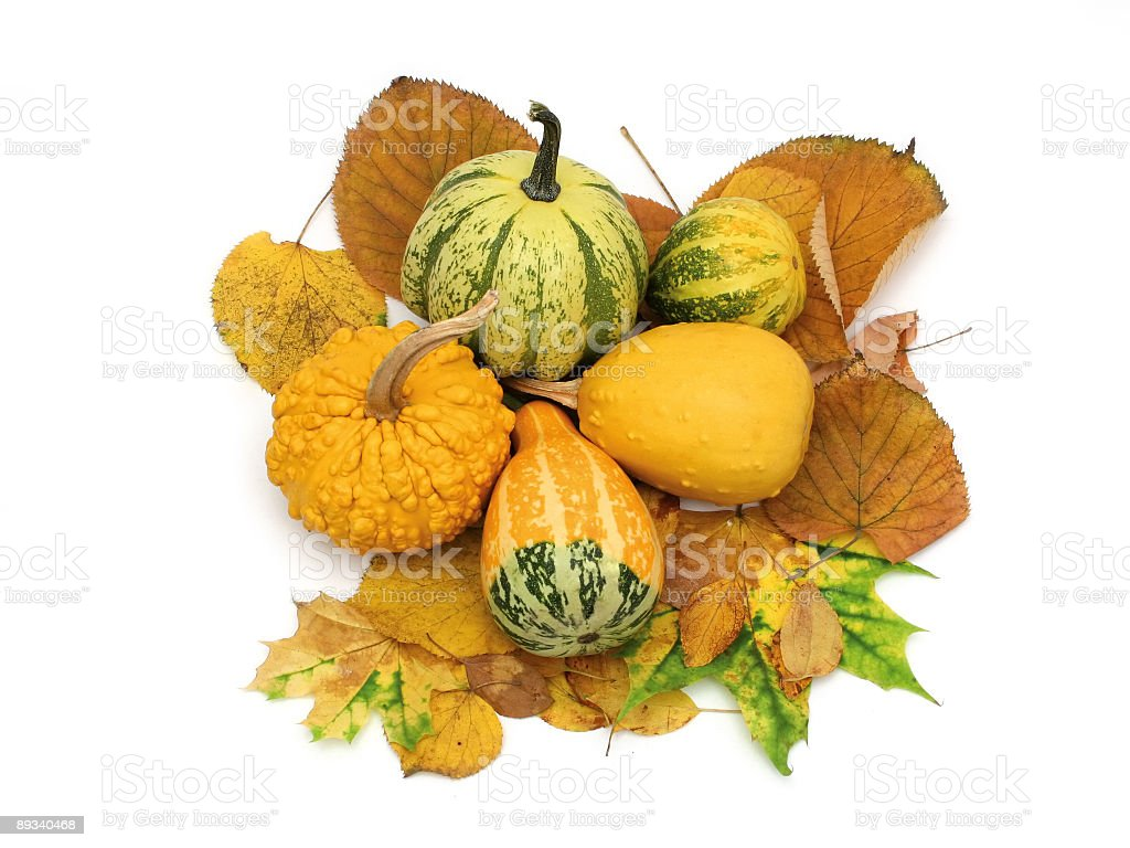 Decorative pumpkins royalty-free stock photo