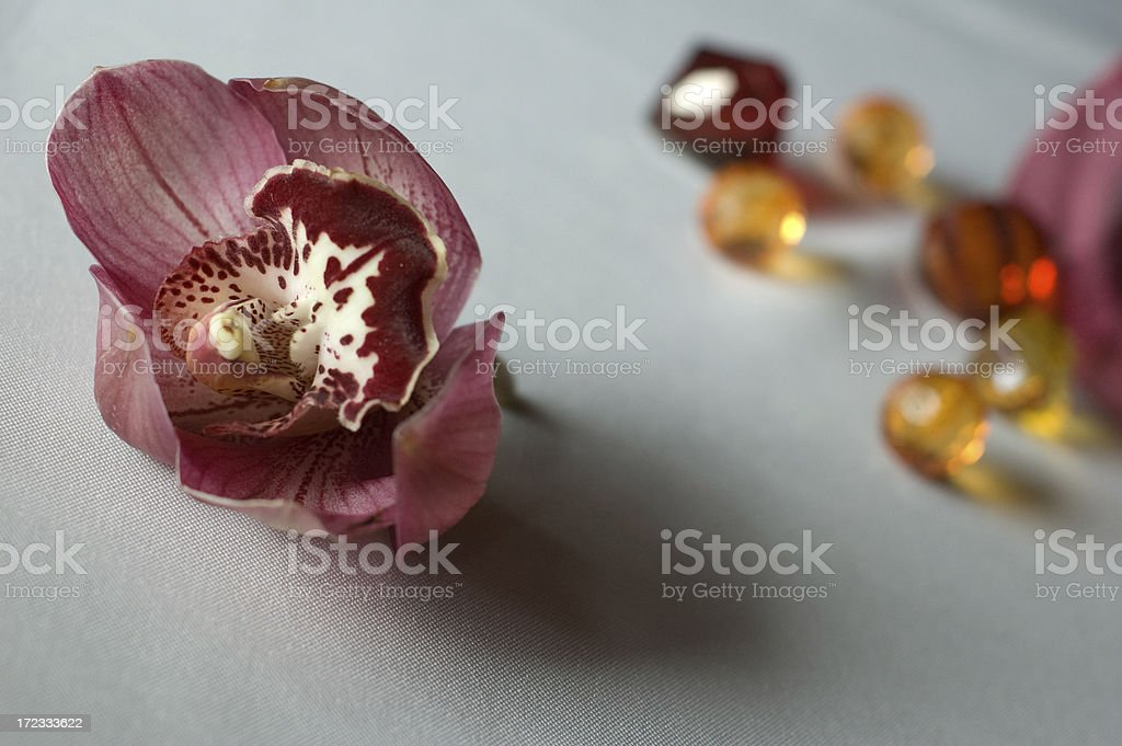 Decorative Table Setting royalty-free stock photo