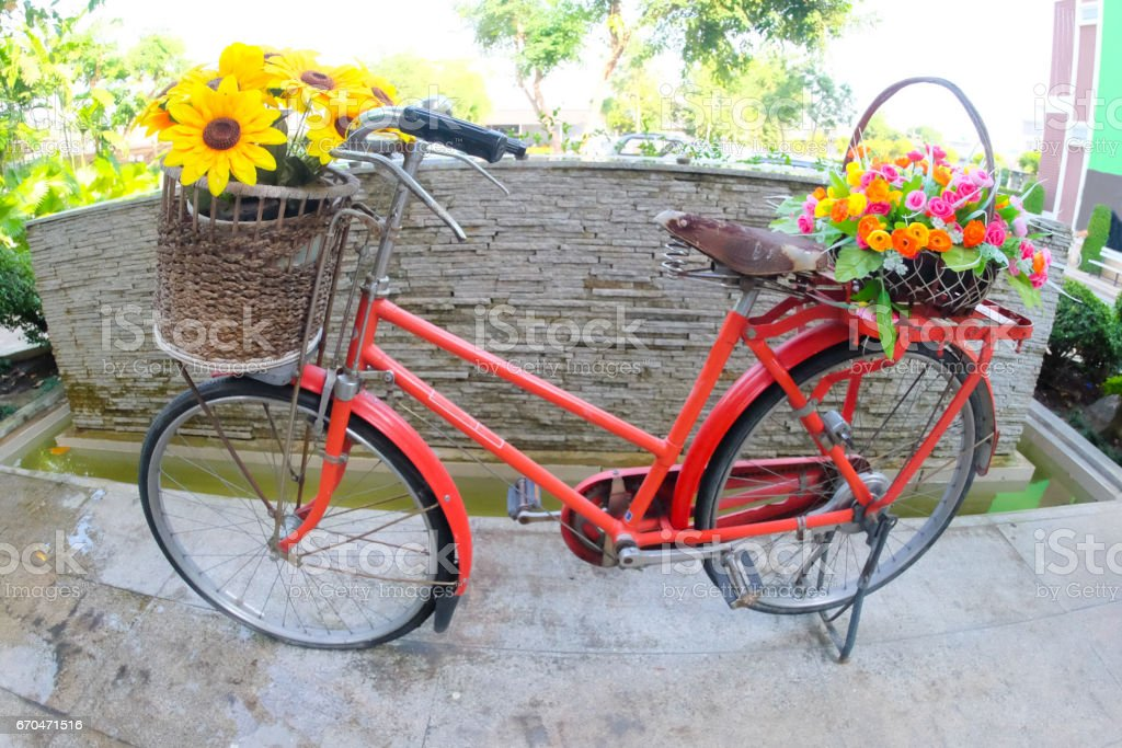 Decorative the bicycle with artificial flowers stock photo
