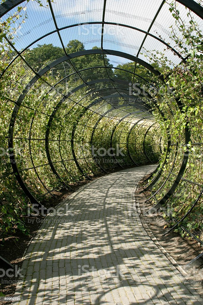 Decorative Walkway stock photo