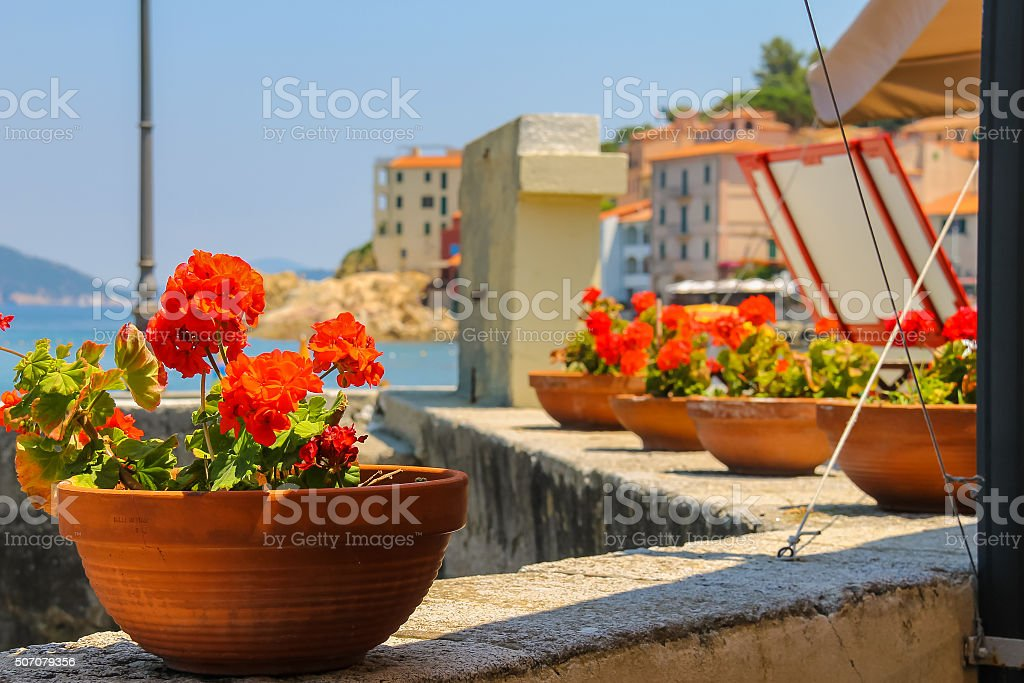 Decortive pots with flowers on the waterfront on Elba Island. stock photo