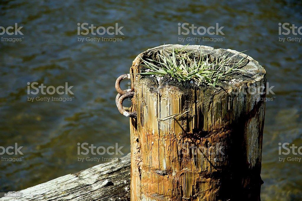 decrepit pillar royalty-free stock photo