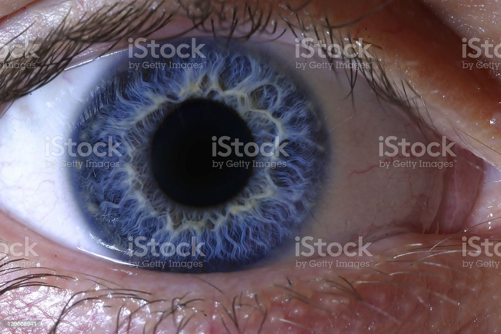 Deep blue human eye stock photo