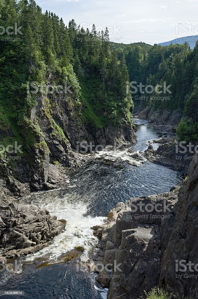 Deep canyon and forest stock photo