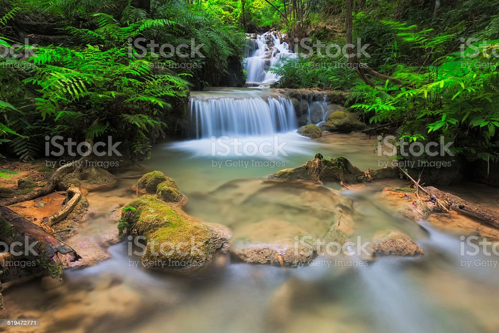Tiefen Wald Wasserfall in Phukang Wasserfall Lizenzfreies stock-foto