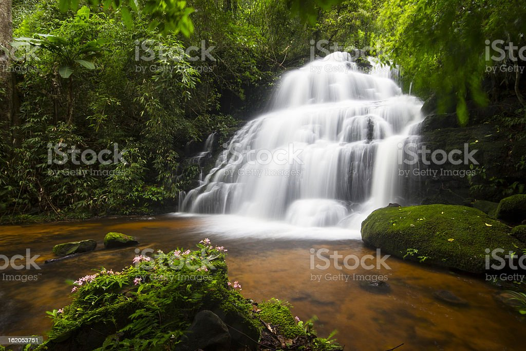 Deep forest Waterfall in Thailand royalty-free stock photo