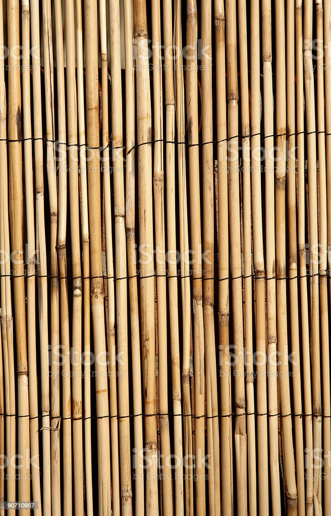 Deep golden bamboo texture background royalty-free stock photo