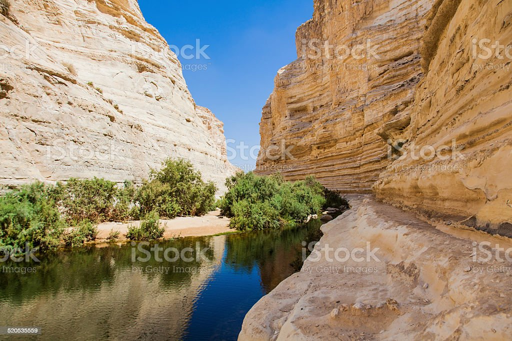 deep gorge in desert stock photo