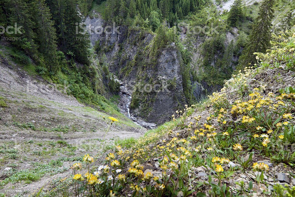 deep gorge royalty-free stock photo