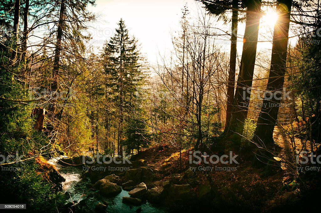 Deep in the mountains stock photo