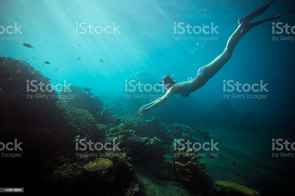 deep snorkeling stock photo