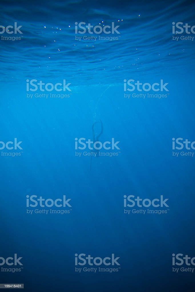 deep spearfishing stock photo