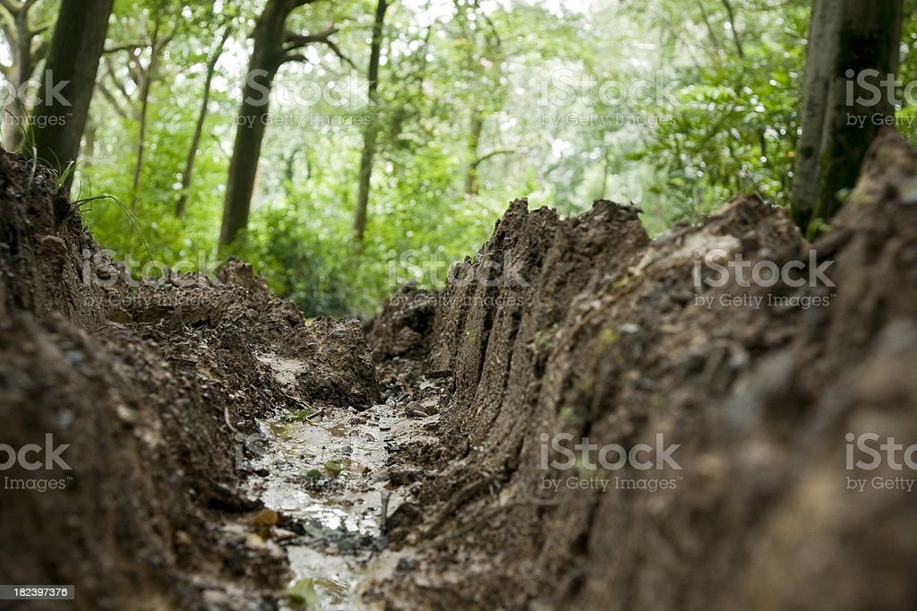 Deep Trench royalty-free stock photo