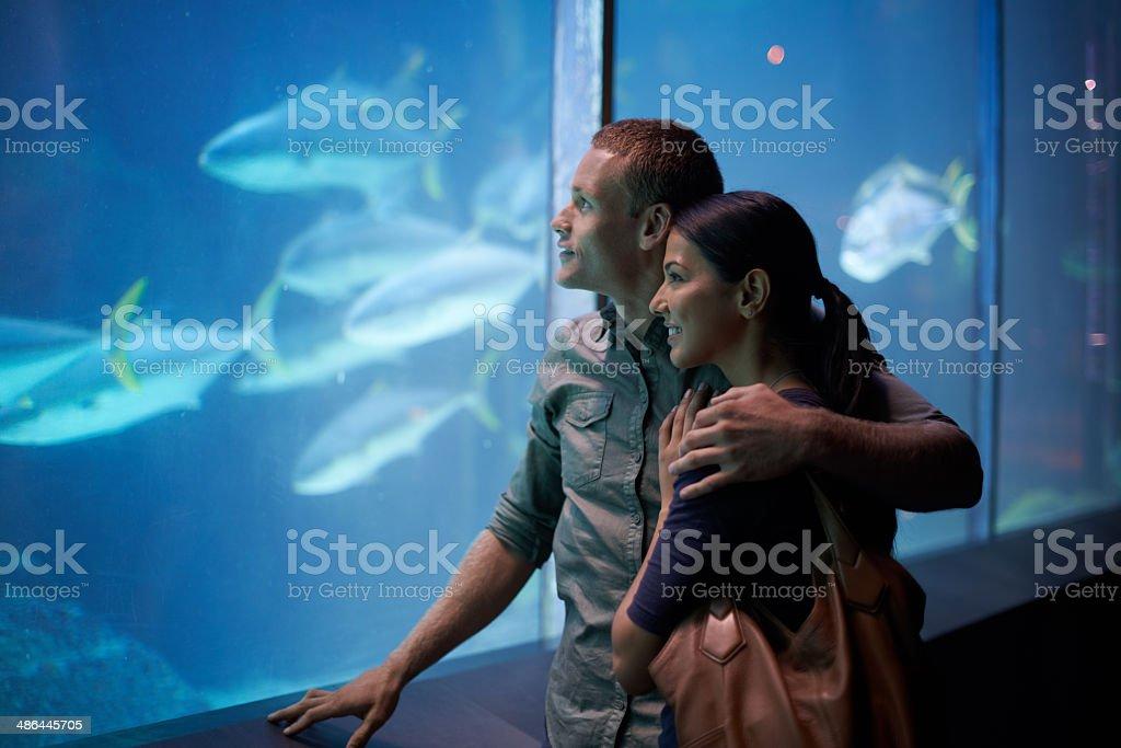 Deep-sea dalliances stock photo