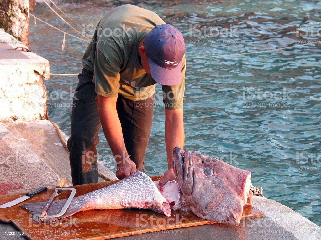 Deep-sea fisherman 2 royalty-free stock photo